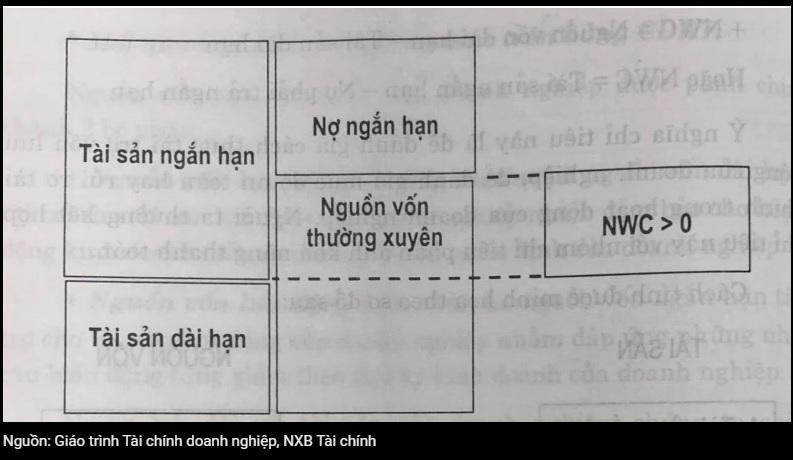 von-luu-dong-anh-03